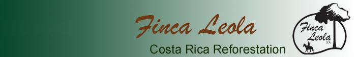 Finca Leola Costa Rica Reforestation
